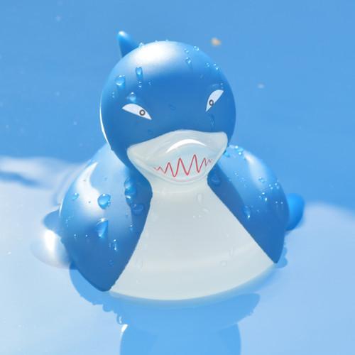 Shark Rubber Duck by LILALU bath toy   Ducks in the Window