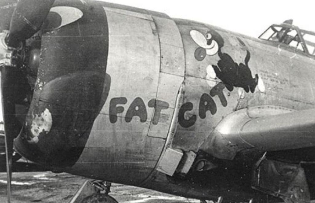 "P-47D Thunderbolt ""Fat Cat"" Decorative Military Aircraft Profile Print Wall Art Decal"