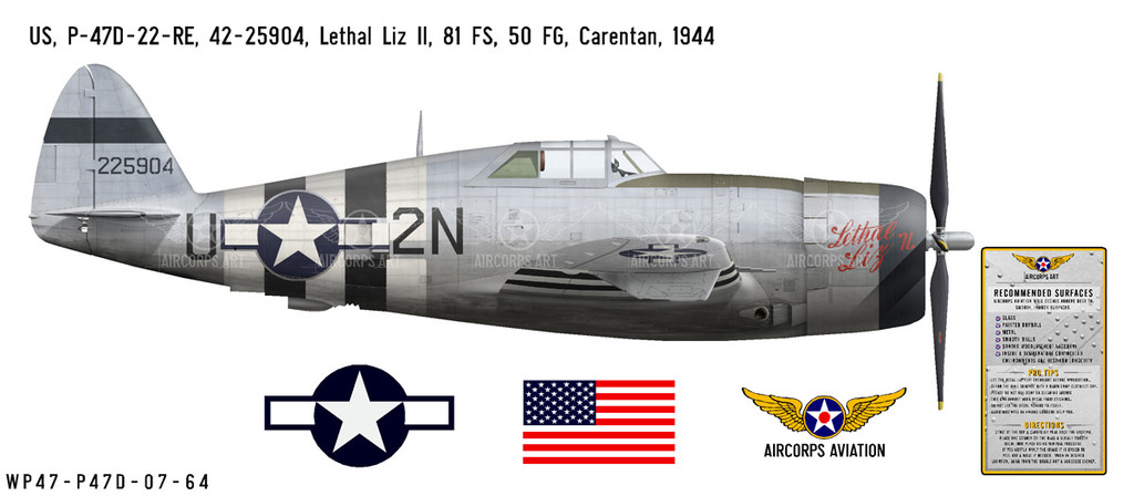 "P-47D Thunderbolt ""Lethal Liz II"" Decorative Military Aircraft Profile"