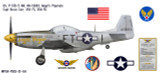 """P-51D Mustang """"Angels' Playmate"""" Decorative Aircraft Profile"""