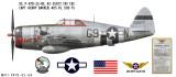 "P-47D Thunderbolt ""Fat Cat"" Decorative Military Aircraft Profile"