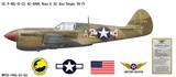 """P-40L Warhawk """"Nona II"""" Decorative Military Aircraft Profile"""