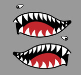 Flying Tigers P-40 Warhawk Shark Mouth Teeth Military Aircraft Nose Art Decal - Includes 2 Mirrored Decals (SM-08)