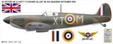 Spitfire Mk IA Richard Hillary - Aircraft Profile Wall Decal