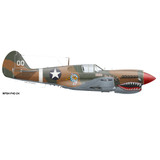 "P-40M Warhawk ""The Jacky C."" Shark Mouth Decorative Military Aircraft Profile Print Wall Art Decal"