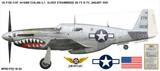 "P-51C Mustang ""Evalina"" Shark Mouth Decorative Military Aircraft Profile Print Wall Art Decal"