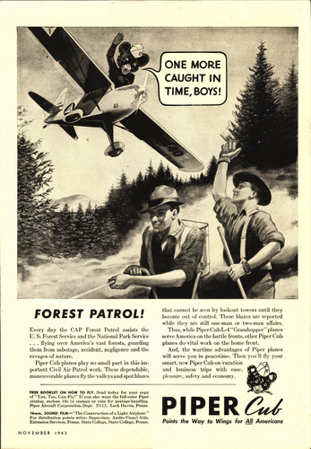 """Piper Cub """"Forest Patrol!"""" Vintage Military Aircraft Airplane Poster"""