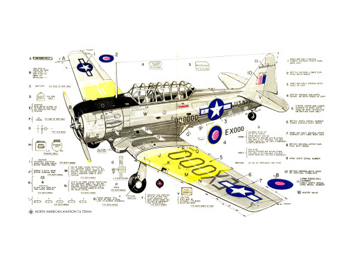 T-6 Texan Markings Diagram Military Aircraft Airplane Poster