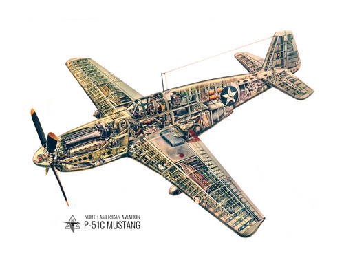 P-51C Mustang Cutaway Vintage Military  Aircraft Poster Mockup Art Display