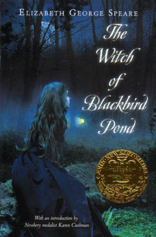 The Witch of Blackbird Pond story book novel
