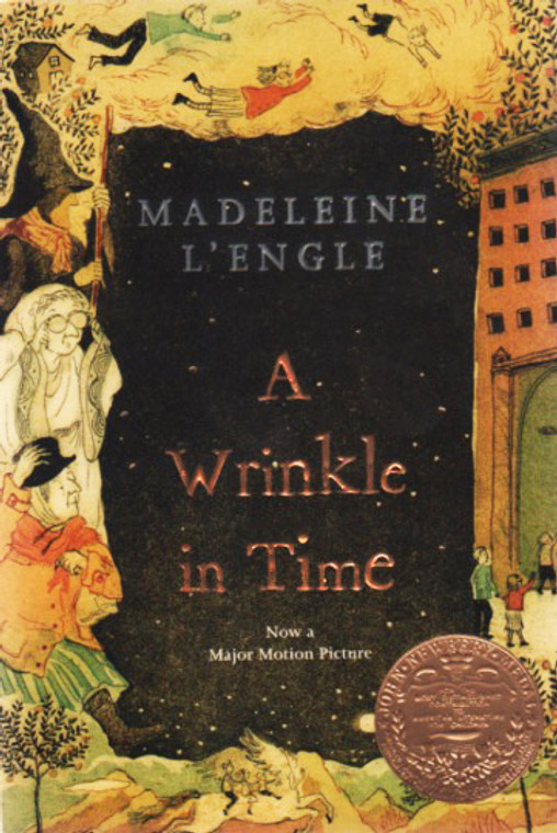A Wrinkle in Time story book novel