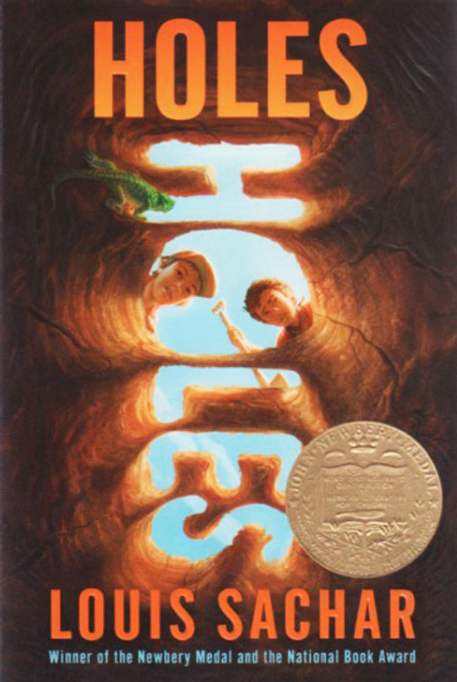 Holes story book novel