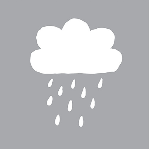DFS05-K Rainy Day