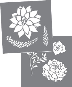 Succulents Product Image