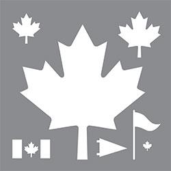 ASMM101-Y Canada Product Image