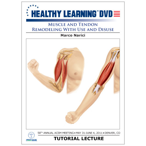 Muscle and Tendon Remodeling With Use and Disuse