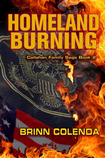 burning series homeland