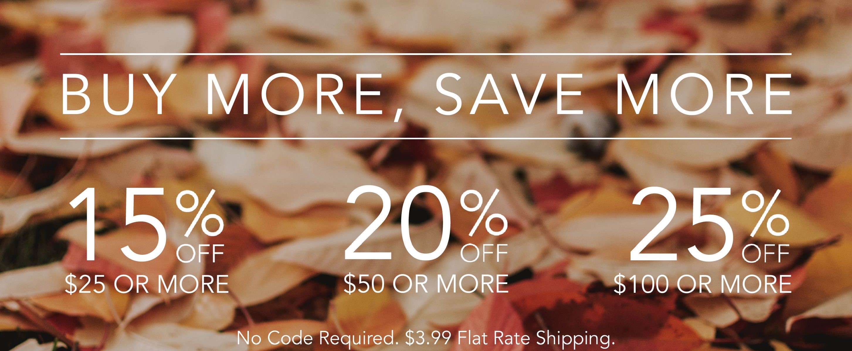 buy-more-save-more-special-offers-fall-banner-.jpg