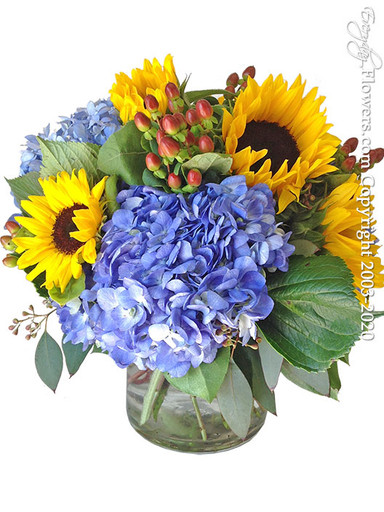 Blue Hydrangea and Yellow Sunflowers Same Day Flower Delivery in Orange County California by Everyday Flowers.