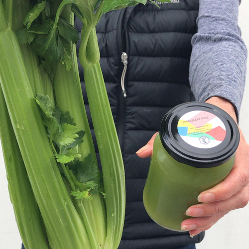 COULD PLAIN CELERY JUICE BE YOUR HEALTH GAME CHANGER?
