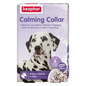 Bea Calming Collar Dog