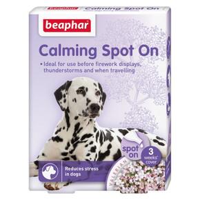 Bea Calming Spot On Dog
