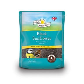 Harrisons Black SunflowerHarrisons Black Sunflower