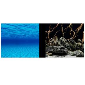 Marina Clearview Aquarium Background