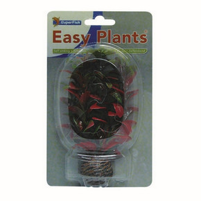 SuperFish Easy Plants Foreground 13cm - 7