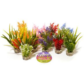 Rosewood Sydeco Nano Fiesta Plants