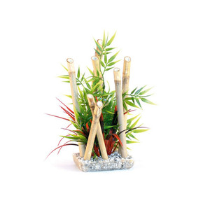 Rosewood Sydeco Bamboo Plant Med
