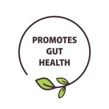 natures_deli-promotes_gut_health