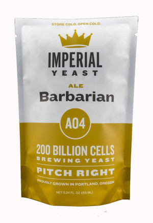 Ready to attack your IPA, Barbarian produces stone fruit esters that work great when paired with citrus hops. Barbarian will give you what you need for an exceptionally balanced IPA.  Temp: 62-70F, 16-21C // Flocculation: Medium // Attenuation: 73-74%