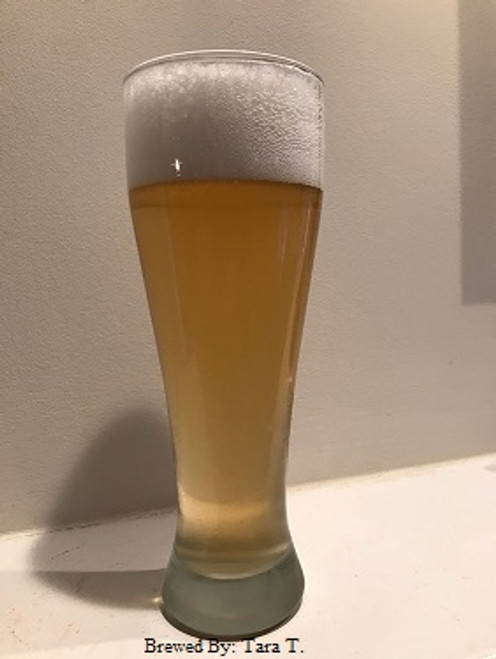 HPS - Nick Slay's Gold Medal Cream Ale, Corn?. Gold Medal Light Hybryd 36th Annual KC Bier Meisters Homebrew competition.