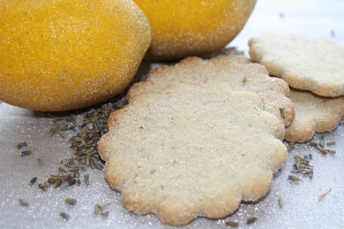 Lemon Lavender Biscochito