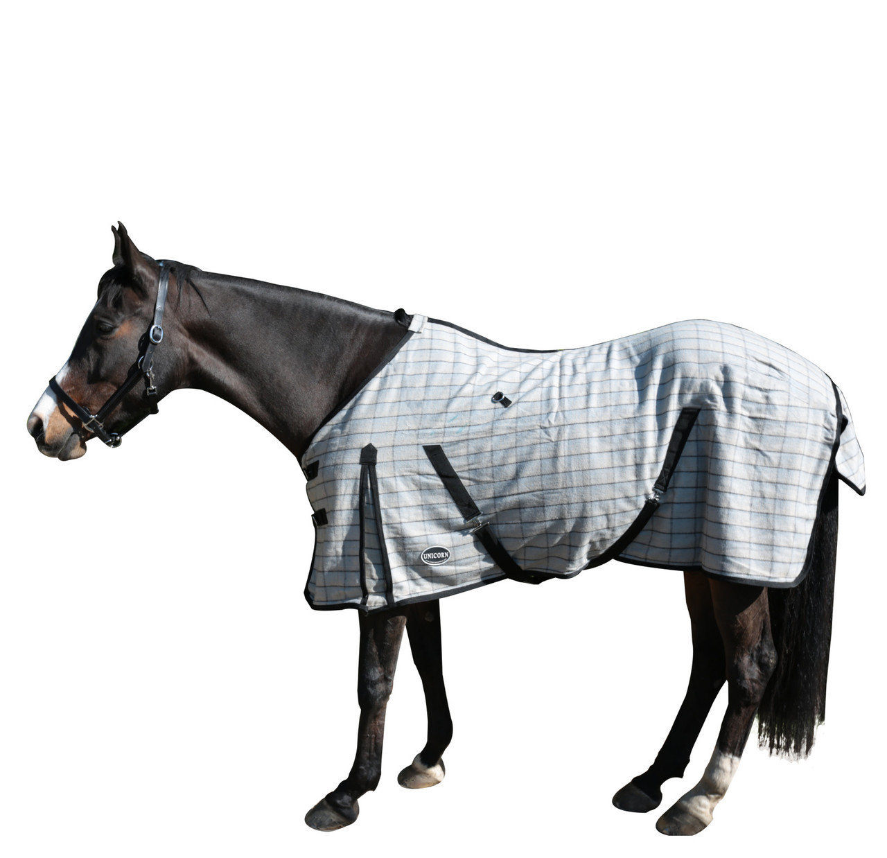 Snug Kersey Wool Regular Neck Horse Rug