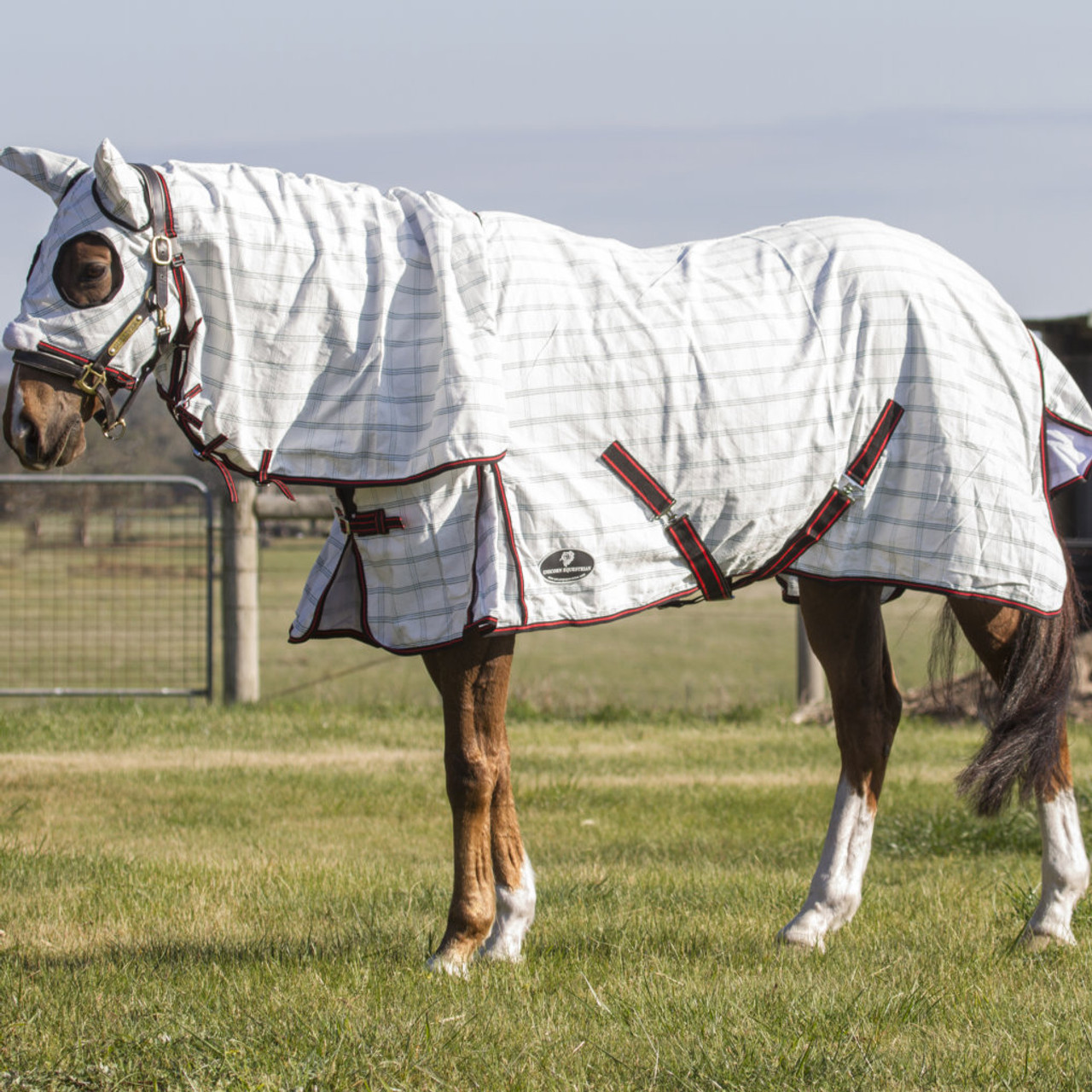 cotton hood combo rug