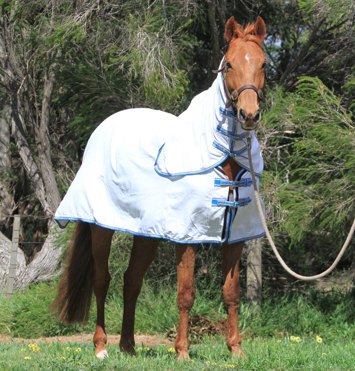 flag combo horse rug