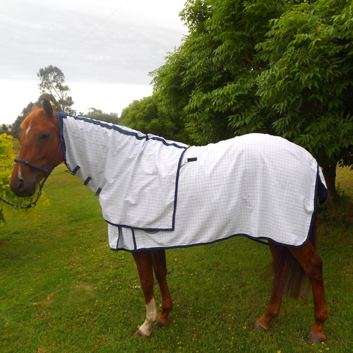 Polycotton  White Blue Check Horse Rug And Detachable Neck Rug Set W/ Generous Tail Flap