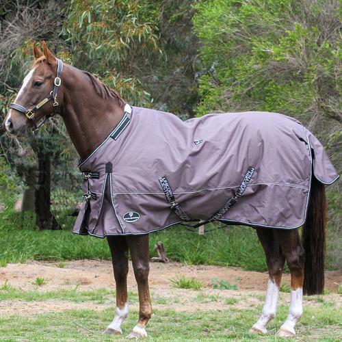 winter horse rug blanket
