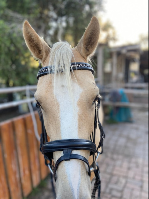 Bonzer Bridle Waymouth Style Black Leather and Swarovski With Reins