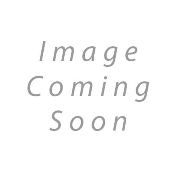Toto THU9134 NEOREST 500 BOWL UNIT BOLT KIT MS950CG