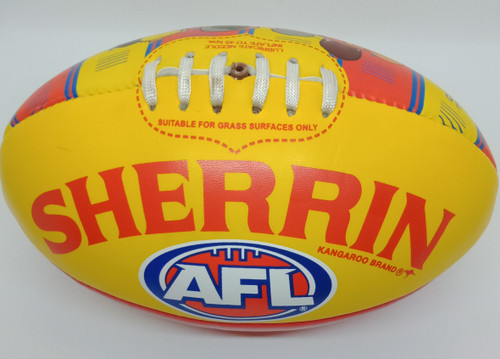 Sherrin SUNS Song Ball