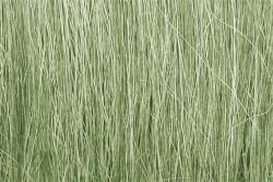 Woodland Scenics FG173 Field Grass Light Green