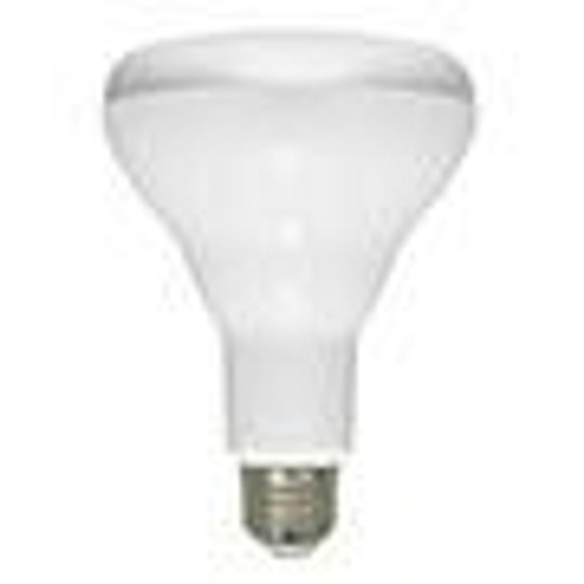 BR 30 Bulbs