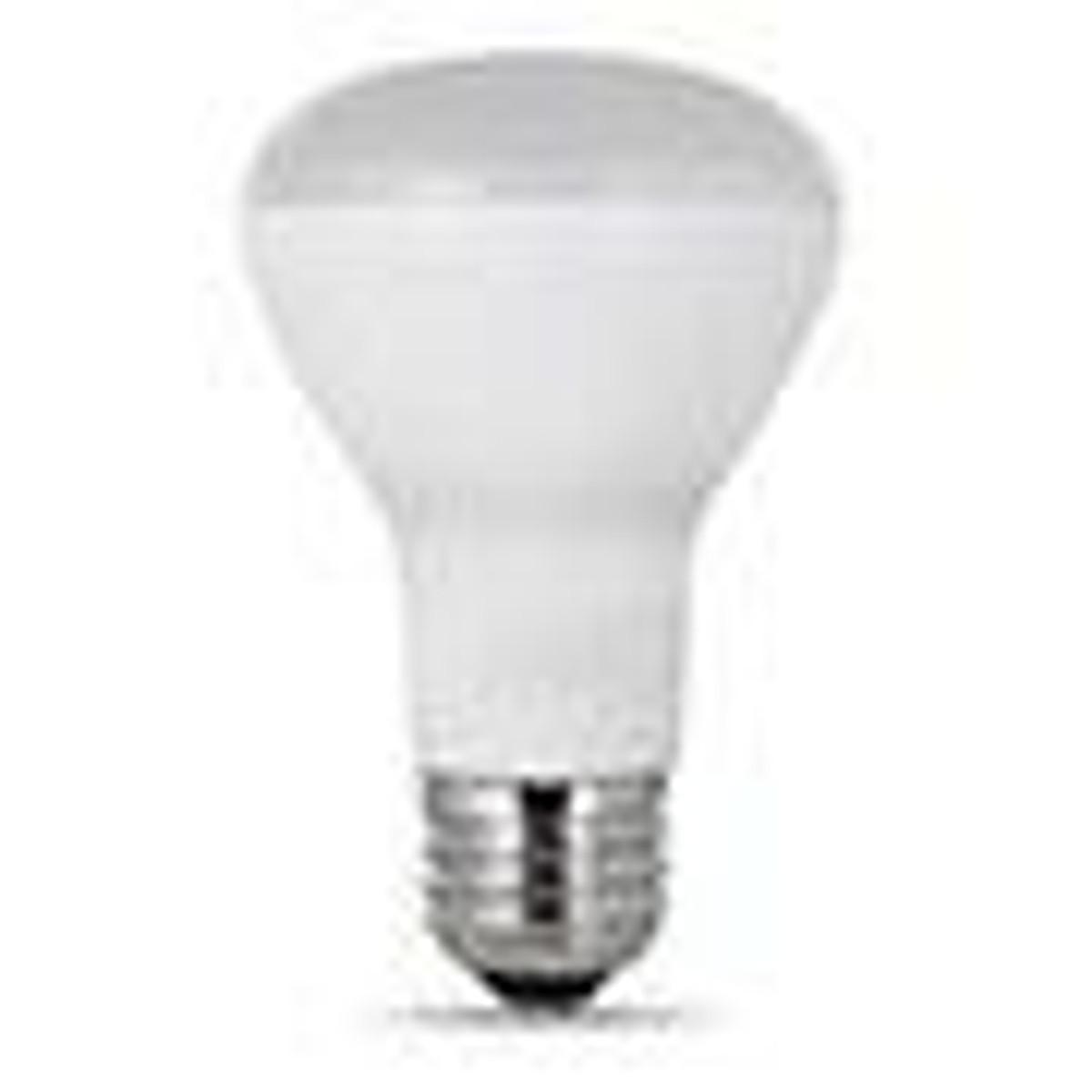 BR 20 Bulbs