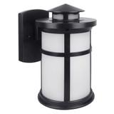 LED Bronze Outdoor Wall Lantern - Euri Lighting