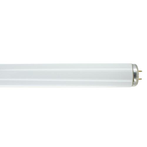 2FT Fluorescent Tube - 20 Watts - SP41 Finish - Medium Bi-Pin