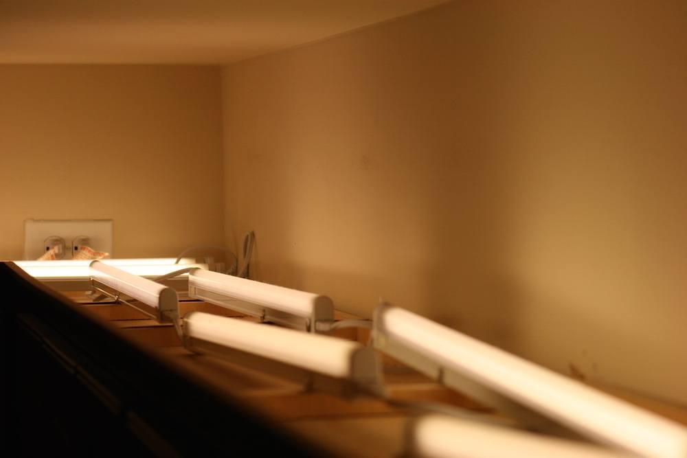 Row of microfluorescent lights
