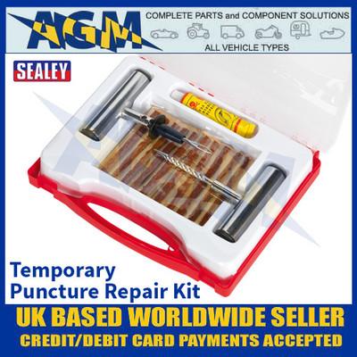 Sealey TST10 Temporary Puncture Repair Kit